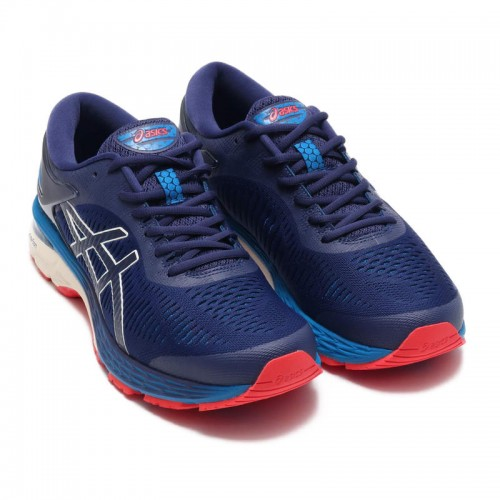 ASICS Gel-Kayano 25